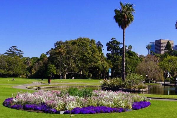royal botanic gardens - Closest Train Station To Royal Botanic Gardens Sydney