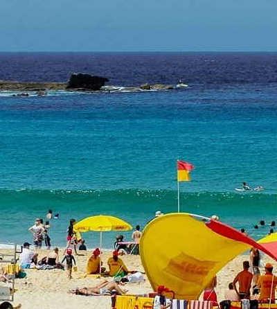 Sydney Half Day Tour with Bondi Beach $49